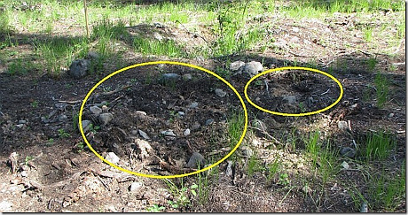 grave site disturbance (1)
